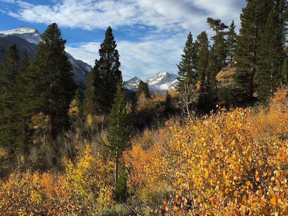 Fall colors along the Hilton Trail.
