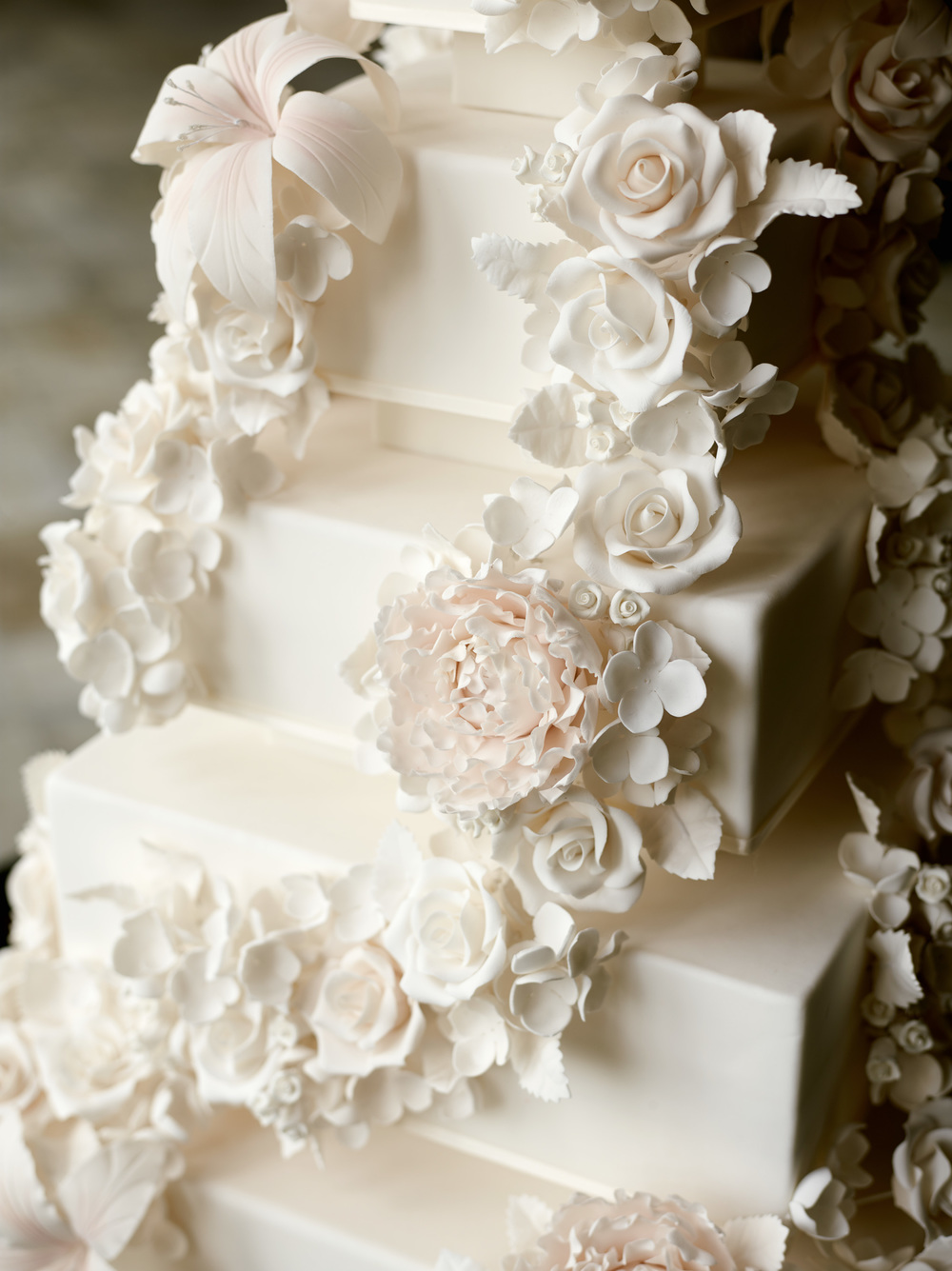modern luxury brides cake shoot5183.jpg