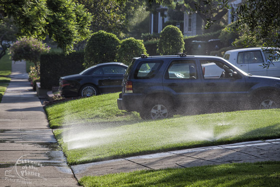 Lawns being watered by sprinklers during severe drought