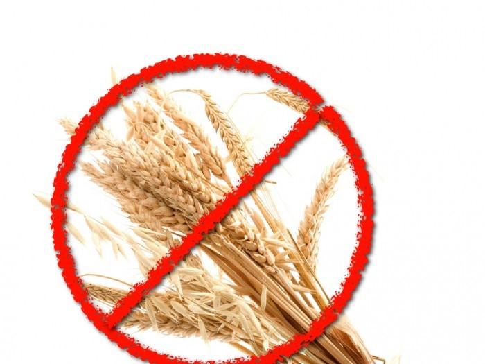 Image result for grain free diet
