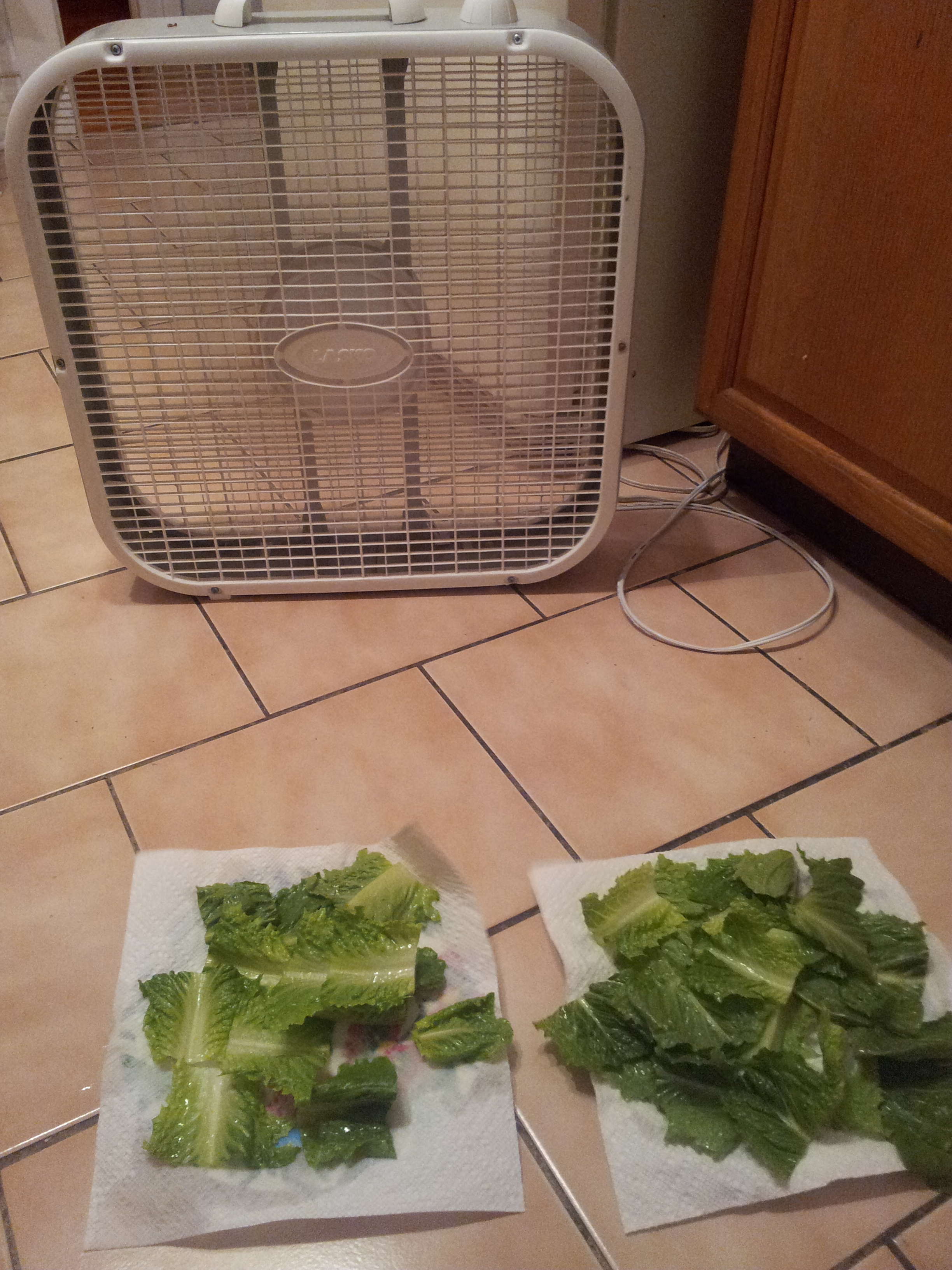salad dryer