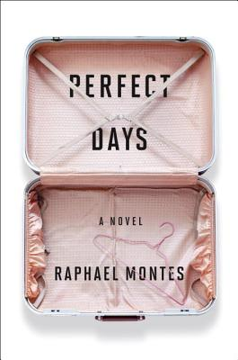 perfect days montes raphael book review hottreads translation litblog