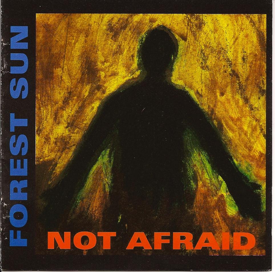 not-afraid-forest-sun.jpg