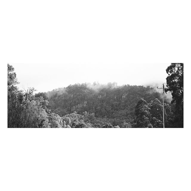 B U S H ⠀⠀⠀⠀⠀⠀⠀ ⠀⠀⠀⠀⠀⠀⠀⠀⠀⠀⠀⠀ ⠀⠀⠀⠀⠀⠀⠀⠀⠀⠀⠀⠀⠀⠀⠀⠀⠀⠀⠀⠀⠀⠀⠀⠀ ⠀⠀⠀⠀⠀⠀⠀⠀⠀⠀⠀⠀ ⠀⠀⠀⠀⠀⠀⠀⠀⠀⠀⠀⠀ ⠀⠀⠀⠀⠀⠀⠀⠀⠀⠀⠀⠀ ⠀⠀⠀⠀⠀⠀⠀⠀⠀⠀⠀⠀ ⠀⠀⠀⠀⠀⠀⠀⠀⠀⠀⠀⠀ ⠀⠀⠀⠀⠀⠀⠀⠀⠀⠀⠀⠀ #xpan #hasselblad #film #panoramic #pano #ishootfilm #filmisnotdead #45mm #buyfilmnotpixels #filmphotography #analogphotography #filmfeed #thefilmcommunity #shootfilm #35mmfilm #believeinfilm #buyfilmnotmegapixels #staybrokeshootfilm #kodak #australia #seeaustralia #australiagram #ig_australia #exploreaustralia #discoveraustralia #aussie #aussiephotos #igersaustralia #400tx #trix400 @kodak @kodakprofessional @tasmania
