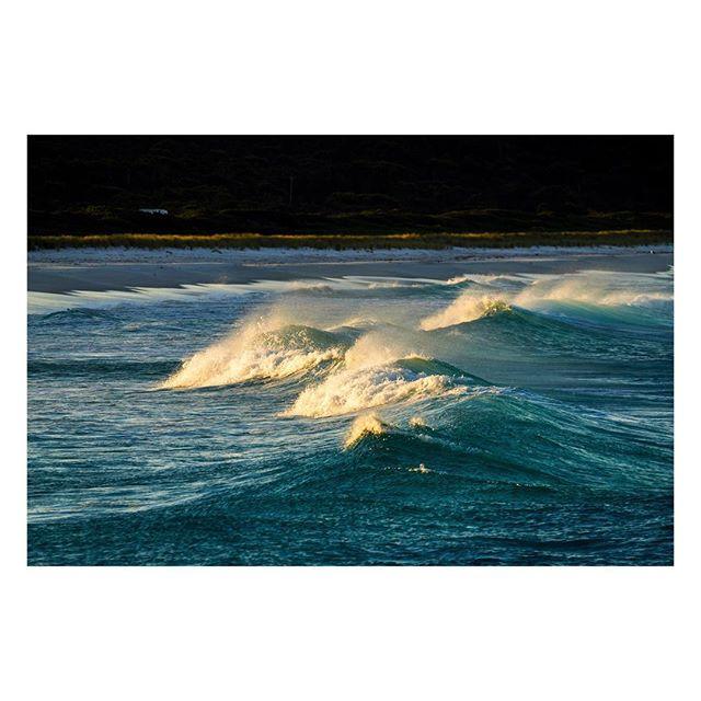 S U N S E T⠀S U R F ⠀⠀⠀⠀⠀⠀⠀ ⠀⠀⠀⠀⠀⠀⠀⠀⠀⠀⠀⠀ ⠀⠀⠀⠀⠀⠀⠀⠀⠀⠀⠀⠀⠀⠀⠀⠀⠀⠀⠀⠀⠀⠀⠀⠀ ⠀⠀⠀⠀⠀⠀⠀⠀⠀⠀⠀⠀ ⠀⠀⠀⠀⠀⠀⠀⠀⠀⠀⠀⠀ ⠀⠀⠀⠀⠀⠀⠀⠀⠀⠀⠀⠀ ⠀⠀⠀⠀⠀⠀⠀⠀⠀⠀⠀⠀ ⠀⠀⠀⠀⠀⠀⠀⠀⠀⠀⠀⠀ ⠀⠀⠀⠀⠀⠀⠀⠀⠀⠀⠀⠀ #bayoffires #ocean #scenicsunset  #australia #seeaustralia #australiagram #ig_australia #exploreaustralia #discoveraustralia #aussie #aussiephotos #igersaustralia #sony #sonyalpha #sonyimages #zeiss #sonyphotography #sonya7 #sonyalphasclub #mirrorless #mirrorlesscamera #waves #surf #ocean #sunsetlovers #sunsets #sunset_madness #beachlife #seascape #a7riii @australia @beautyoftasmania @tasmaniagram @tasmanianwilderness @tasmania