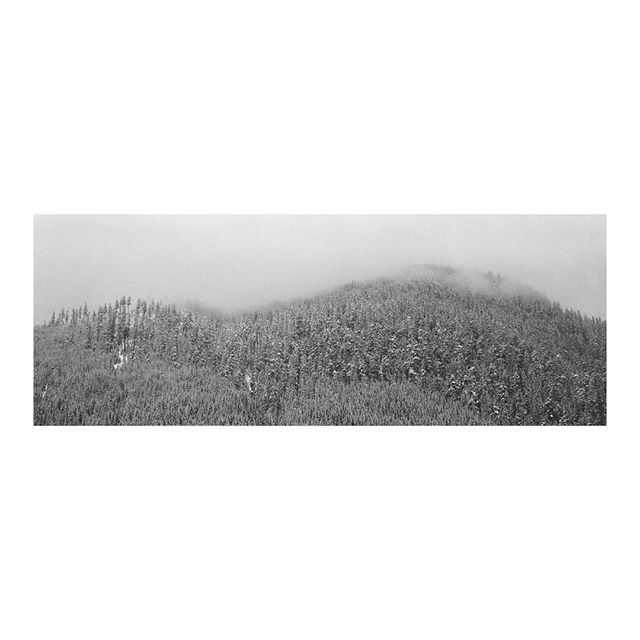 D U S T I N G ⠀⠀⠀⠀⠀⠀⠀ ⠀⠀⠀⠀⠀⠀⠀⠀⠀⠀⠀⠀ ⠀⠀⠀⠀⠀⠀⠀⠀⠀⠀⠀⠀⠀⠀⠀⠀⠀⠀⠀⠀⠀⠀⠀⠀ ⠀⠀⠀⠀⠀⠀⠀⠀⠀⠀⠀⠀ ⠀⠀⠀⠀⠀⠀⠀⠀⠀⠀⠀⠀ ⠀⠀⠀⠀⠀⠀⠀⠀⠀⠀⠀⠀ ⠀⠀⠀⠀⠀⠀⠀⠀⠀⠀⠀⠀ ⠀⠀⠀⠀⠀⠀⠀⠀⠀⠀⠀⠀ ⠀⠀⠀⠀⠀⠀⠀⠀⠀⠀⠀⠀ #xpan#berggerpancro400#hasselblad #filmisnotdead #ishootfilm #believeinfilm #buyfilmnotmegapixels #film #filmphotography #analog #thefilmcommunity #shootfilm #hiking #outdoors #mountainlife #wilderness #landscape_lovers #optoutside #mountainview #snow #winter #snowing  #pacificnorthwest #wa #livewashington #pnwcollective #pnwlife #upperleftusa #pnw #pnwonderland