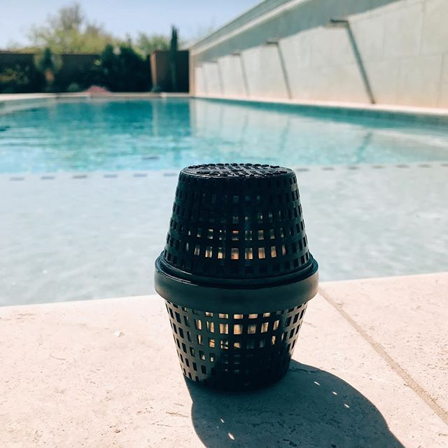 😍 Making pools shine left and right with @pool_rx