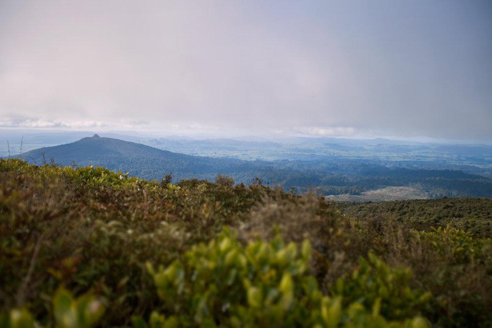 Titiraupenga (left), from Mt. Pureora summit.