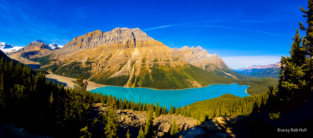 Peyto Lake - The azure blue water of Peyto Lake as seen from the Bow Summit lookout.