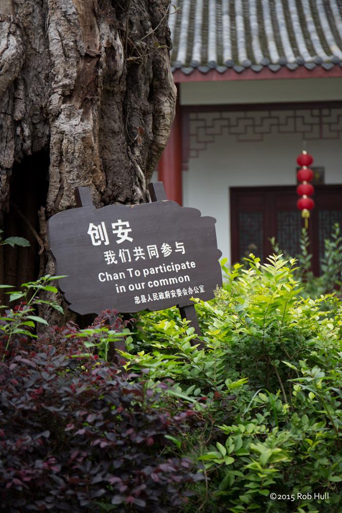 00166-China-8795.jpg