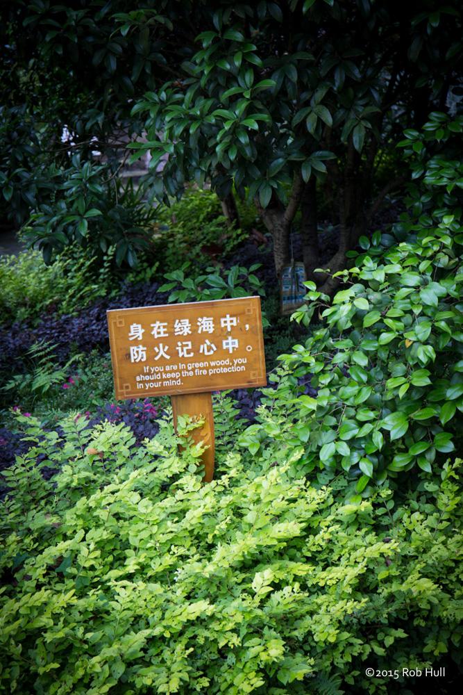 00167-China-8739.jpg