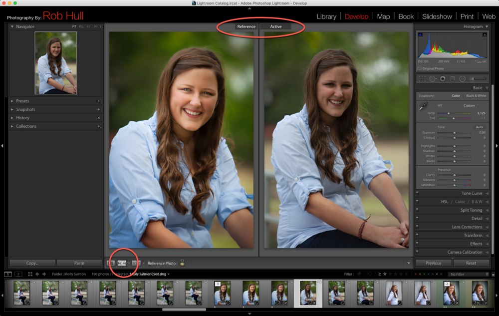 This is the Reference View in Adobe Lightroom Develop module.