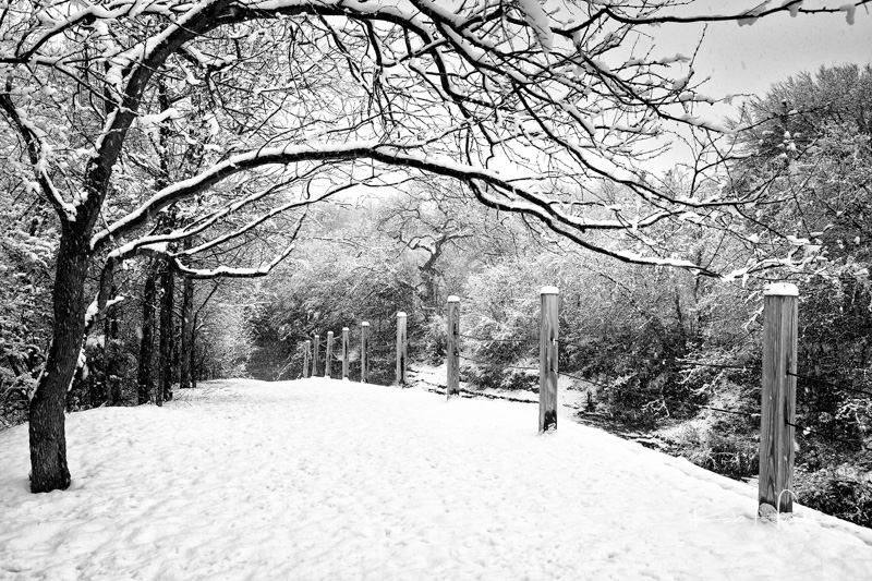 Coppell Snow 2010_4457-Edit-3.jpg