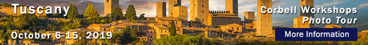 W-Tuscany 2019-10.jpg