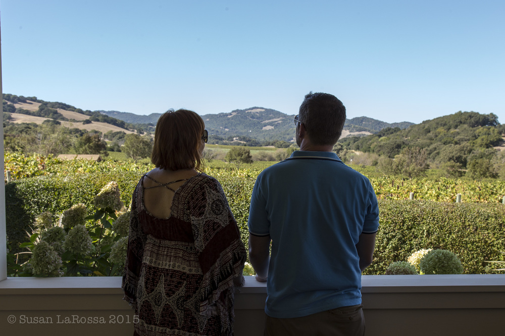 overlooking the Durell Vineyard