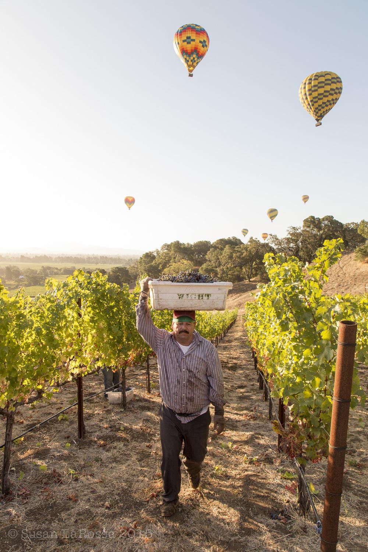 balloons bin overhead-1.jpg