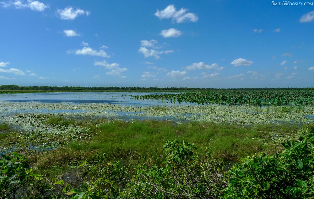Kakadu Lake.jpg