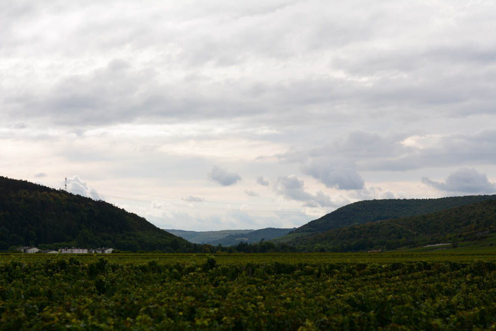 burgundy-france-2.jpg