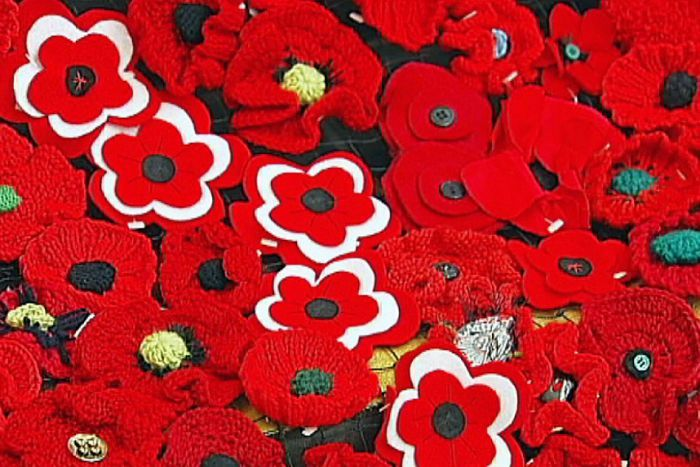 Click here for ABC tv interview with founding Artists of Poppy project.