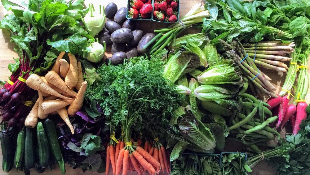Rainbow veg medley.JPG