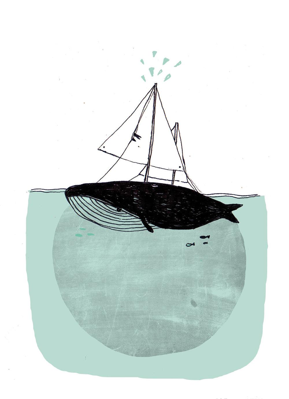 whale copy.jpg