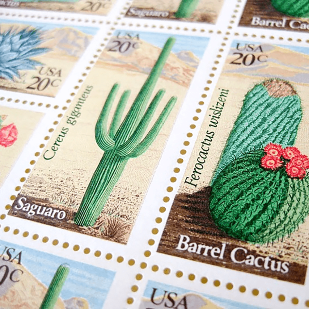 CactusStamp.png