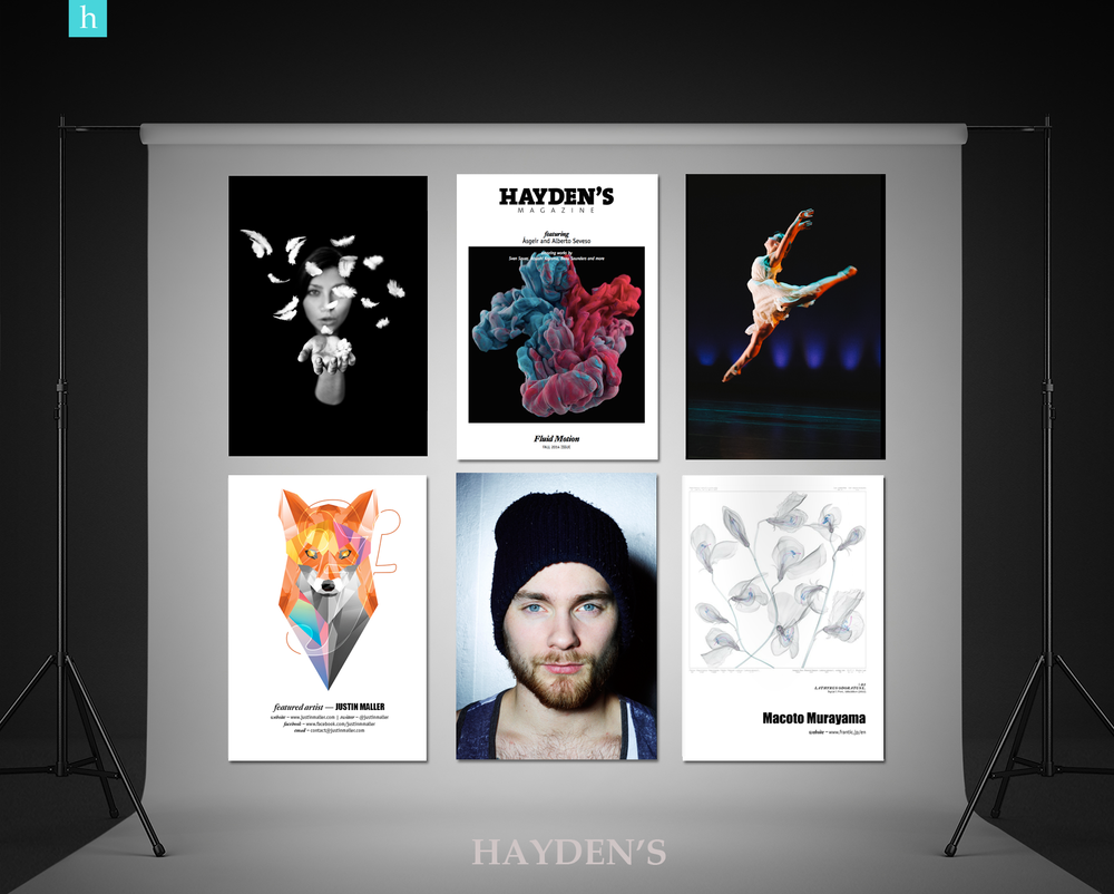 Haydens_Gallery_Roll