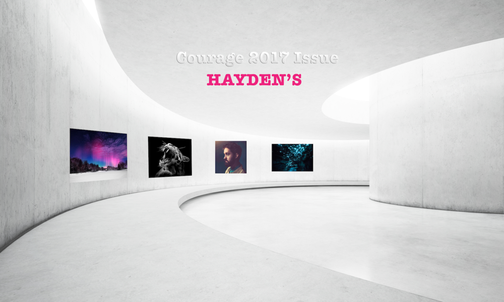 Haydens_Gallery_Courage