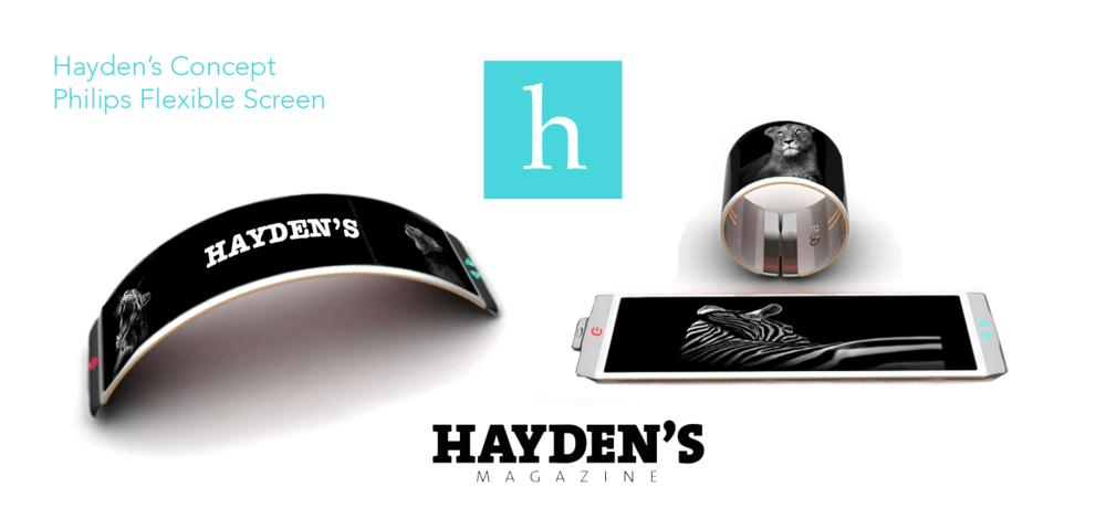 Hayden's concept  on flexible screen 2016