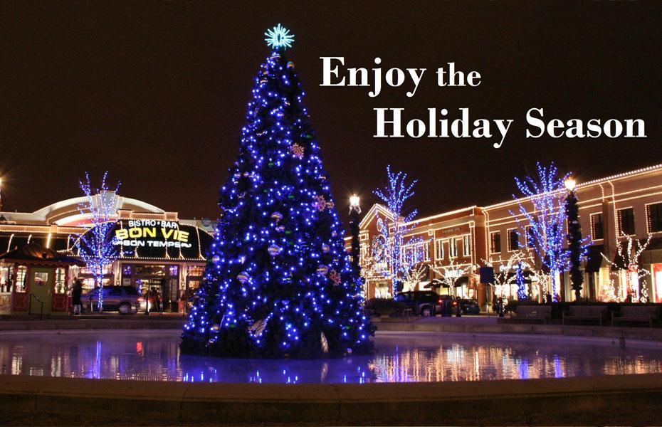enjoy the holiday season.jpg