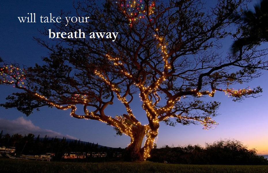 take your breath away.jpg