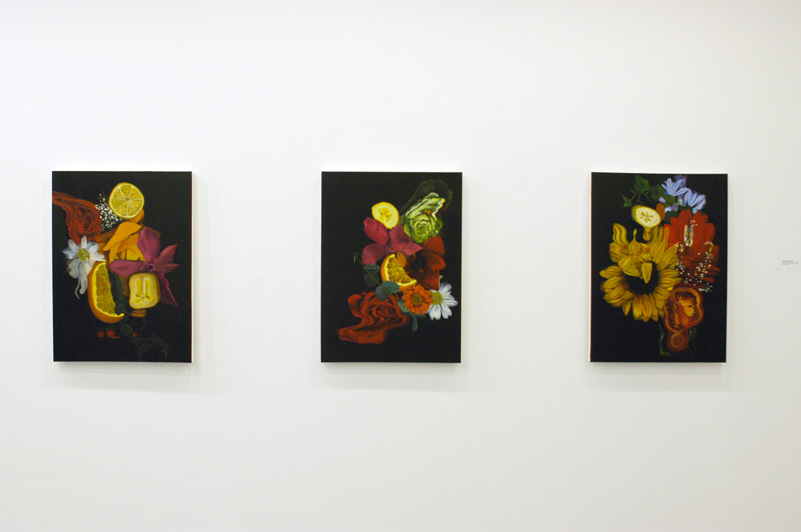 Still Lives 1, 2 & 3 (Installation View)