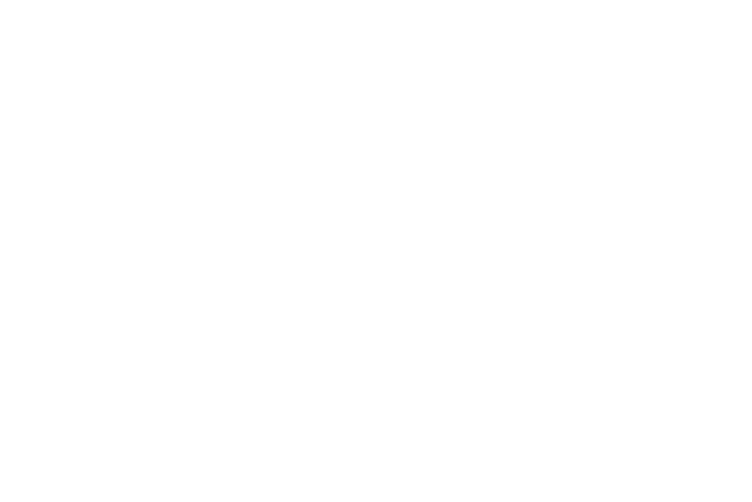 DJ TWO SHOES