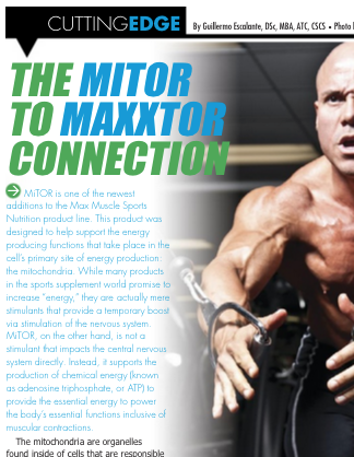 "CLICK HERE   TO READ ARTICLE ""THE MITOR TO MAXXTOR CONNECTION"""