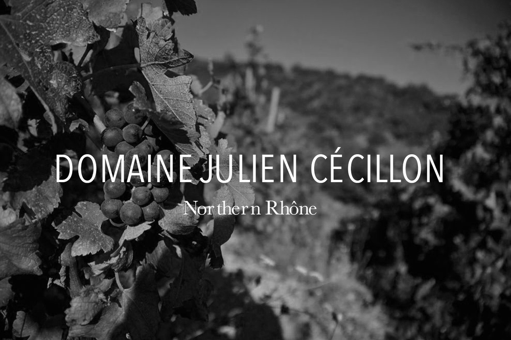domainejuliencecillon.jpg