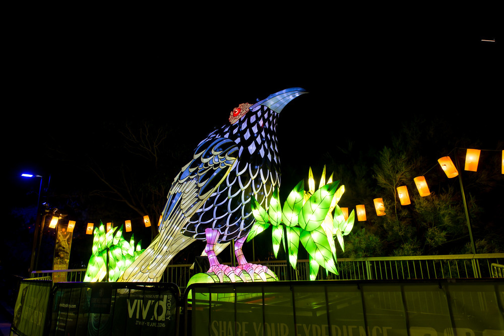Vivid at Taronga Zoo
