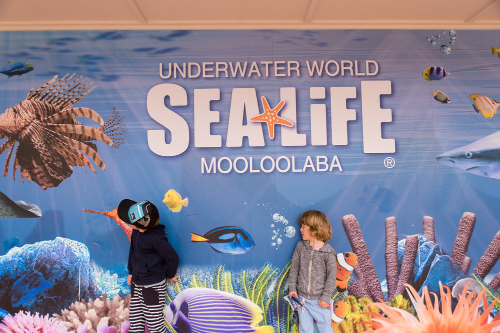 Underwater Sealife world in Mooloolaba