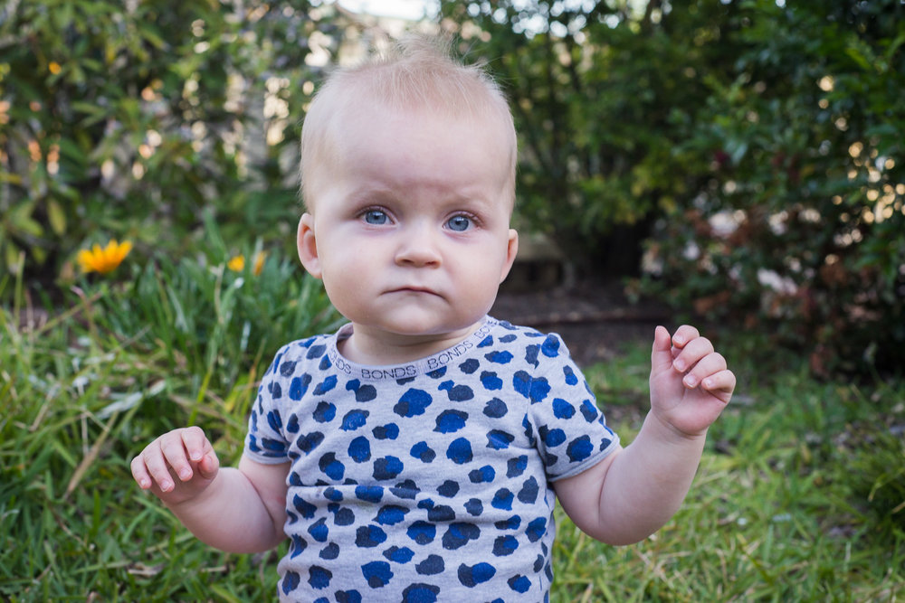 Baby Beau in the garden
