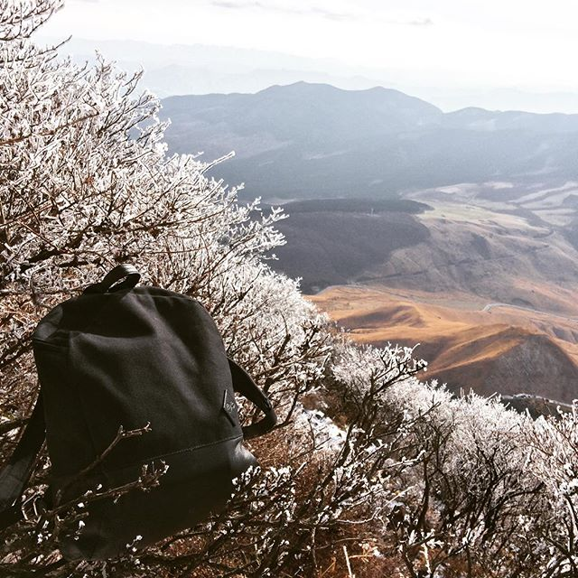 A Hawthorn Compact enjoying a Christmas hike in Japan! 🏔⛩🎐🇯🇵#hawthornabroad #madeinengland #theftproofbag #waxedcanvas