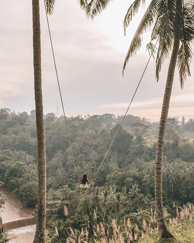 Find me under the palms or, eating ice cream 🙈🍦 — I was thinking to do a blogpost all about this precious spot in Ubud, what d'yall think? ✨