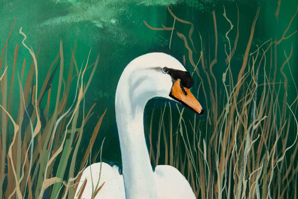 Chaddesley Swan 024.jpeg
