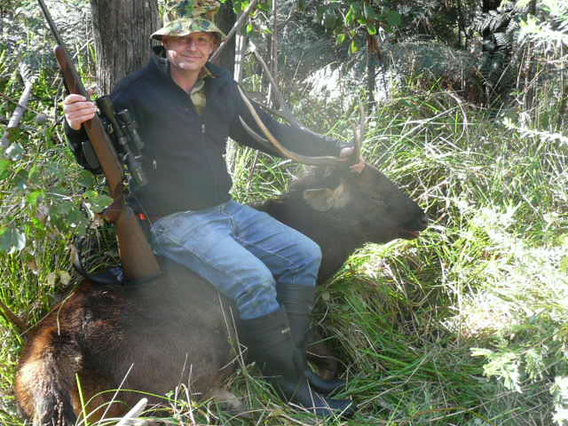 Another big old sambar stag taken in the middle of the day.