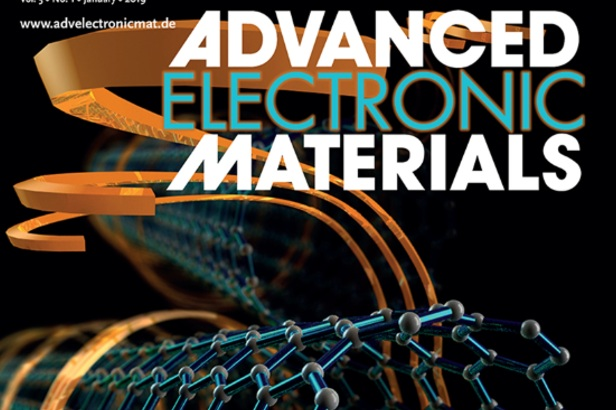 New Publication in Adv. Elec. Mater.