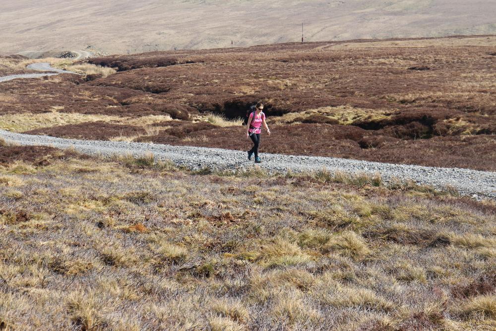 A winding road beside a firing range