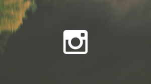 OXB_Website_InstagramBanner.jpg