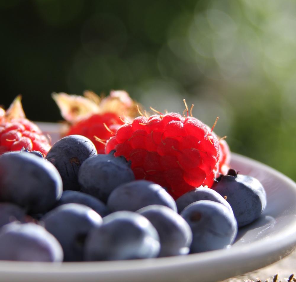 www.nourishedbite.com