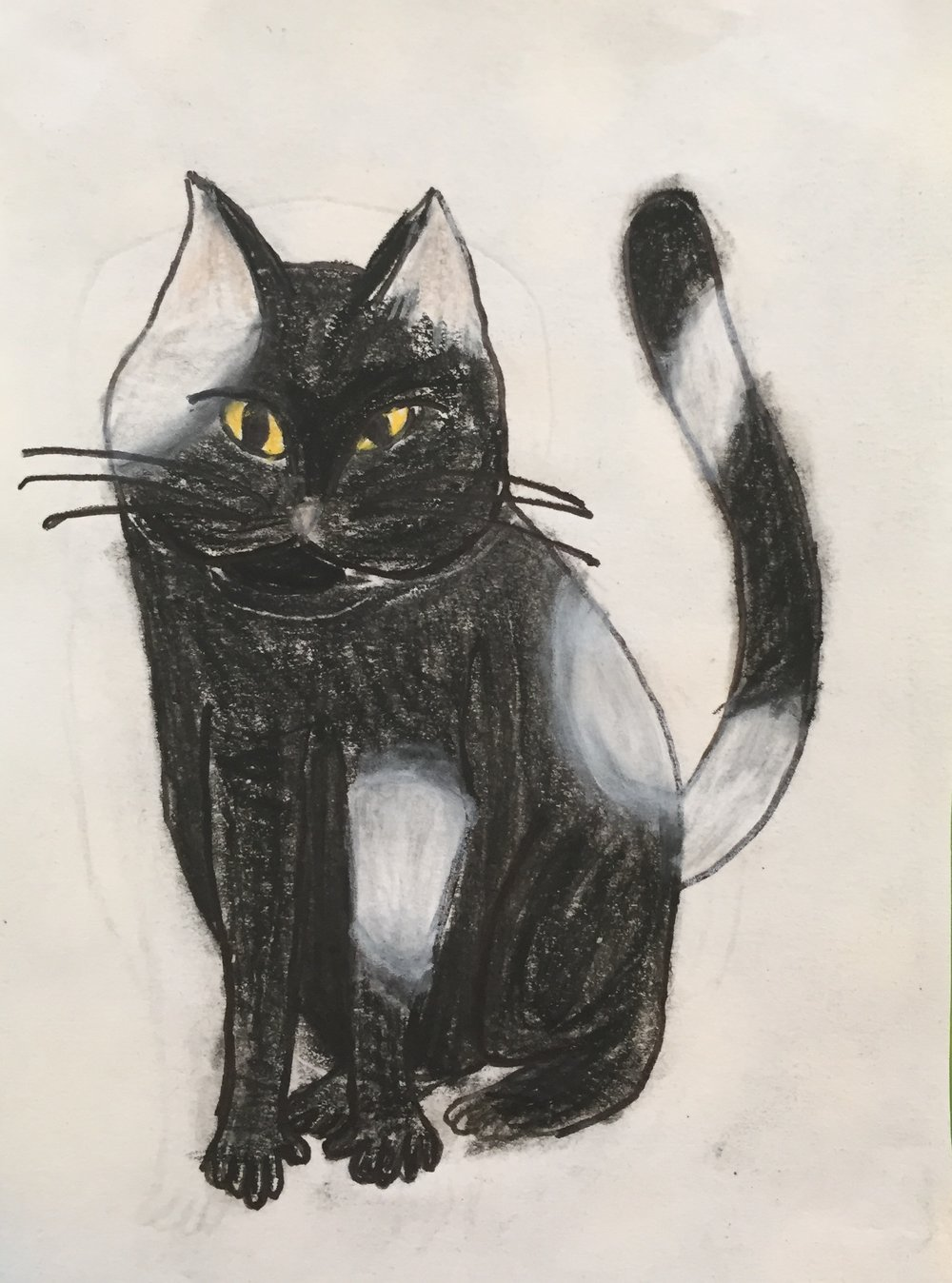 The Akosta Cats -- 2. Paulie. 2017. Charcoal, ink, graphite, and conte crayon.