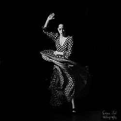 irene_bel_photography_photographer_barcelona_belen_maya_flamenco.jpg
