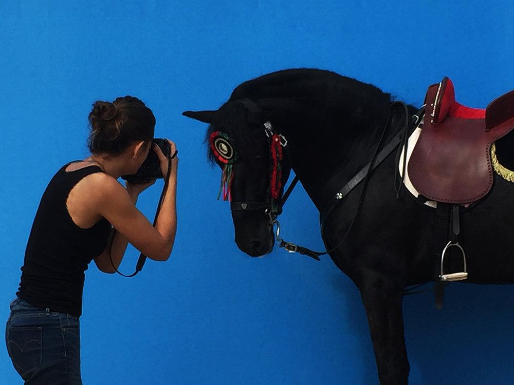 irene-bel-photography-horse