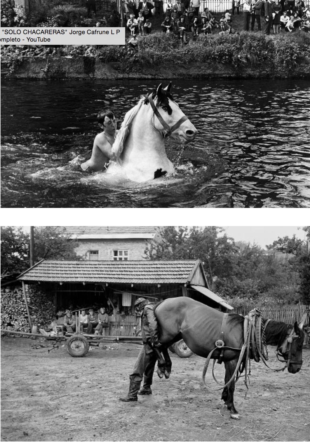 Fotografias Koudelka caballos horses